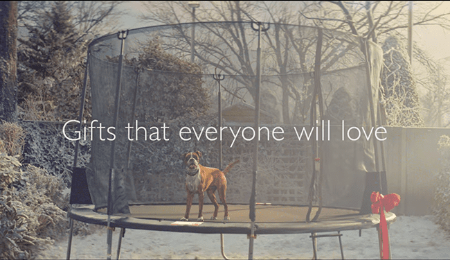 John Lewis returns as the king of Christmas ads with #BusterTheBoxer